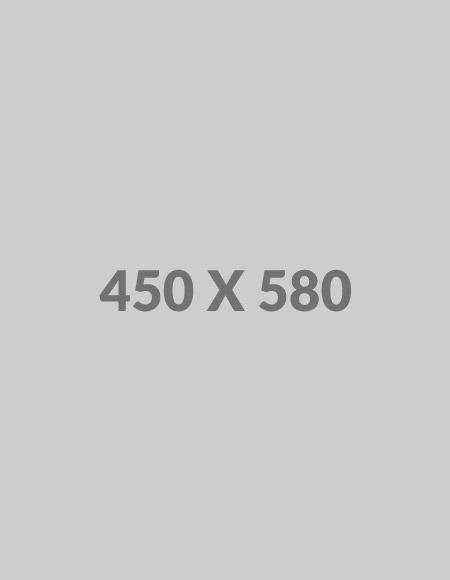 450x580